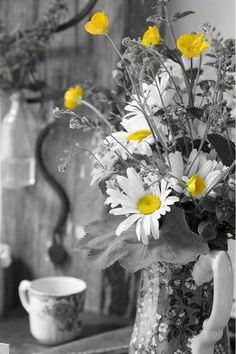 "color ""splash"" #yellow / daisies"