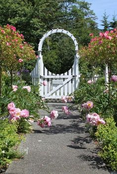 19 GREAT Garden Arbor Idea and 2 easy projects.  Fishtail Cottage's romantic arbor gate