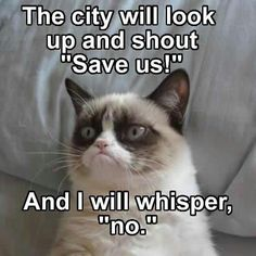 "The city will look up and shout ""save us!""  And I will whisper, ""no."" 
