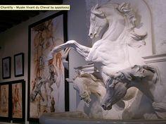 Chantilly - Musee Vivant du Cheval Paris, via Appaloosa - Flickr