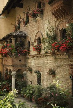 Perugia wall of flowers ~ Umbria