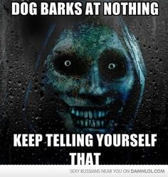 Good night sleep tight on pinterest scary stories Why does my dog bark when i leave