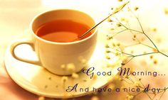 Beautiful Good Morning Have a Nice Day Wallpapers is a collection of beautiful good morning images and wallpapers. Send and wish Beautiful Good Morning. Beautiful Good Morning Wishes, Good Morning Flowers, Good Morning Picture, Morning Pictures, Good Morning Greetings, Good Morning Quotes, Night Quotes, Good Night Dear Friend, Image Facebook