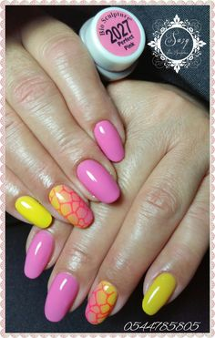 Bio Sculpture ~ Perfect Pink 2027 by Suzy Abou Gel Color, Colour, Bio Sculpture Nails, Nail Stuff, Perfect Pink, Girl Things, Suzy, Pedi, Pink Nails