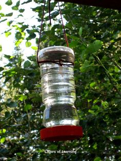CJ chose to study the hummingbird for a project assignment so we built a homemade hummingbird feeder. Description from layers-of-learning.com. I searched for this on bing.com/images