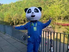 ChengDu WestChinaGo Travel Service www.WestChinaGo.com Tel:+86-135-4089-3980 info@WestChinaGo.com Chengdu, Volunteer Programs, Day Tours, Minions, Panda, China, Travel, Fictional Characters, Art