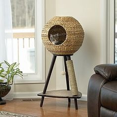 Pet Home Natural Wicker Sphere Cat Tower – Sauder - Sauder Woodworking Sauder Woodworking, Room Deco, Ideal Toys, Cat Room, Cat Condo, Pet Furniture, Furniture Ideas, Modern Cat Furniture, Furniture Movers