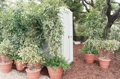 The goal of decorating should be to make the toilet look like a part of the decor, instead of an eyesore. Here are some ideas to help creatively camouflage a porta potty.