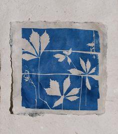 Botanical print cyanotype pressed leaf art handmade paper