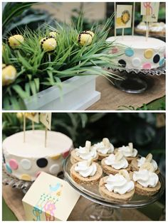 Safari Baby Shower Ideas #desserts #peartreegreetings #jungle #animals