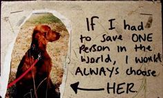 i'd have to choose two... i love my animals!