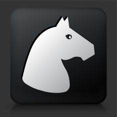 Black Square Button with Horse Icon vector art illustration