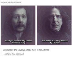 this just shows how much sirius and snape hated each other.......... the haven't stopped being sassy to each other even though their dead