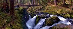 A view of Sol Duc Falls, just a short walk from Sol Duc Campground in Olympic National Park