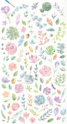 Floristic Watercolor Collection by Julia Dreams on @creativemarket