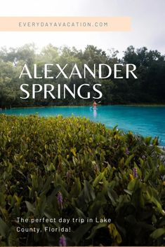 Alexander Springs: the perfect day trip in Lake County, Florida Florida Vacation, Vacation Trips, Amazing Destinations, Travel Destinations, Travel Photos, Travel Tips, Budget Travel, Florida Springs, Ocala Florida
