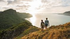 Hiking along Auckland's wild west coast