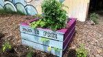 DIY $2 Self-Watering Garden Bed