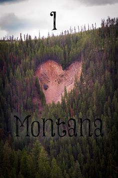 You never forget your first love - Montana is ours. Happy Valentine's Day! Love and Laughter: I love Montana -