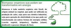 O Palhetas na Foz: Central de Biomassa vai ser instalada na Figueira ...