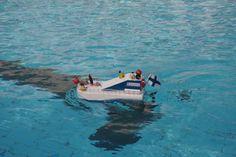 Kiva vene kisassa Intiassa!