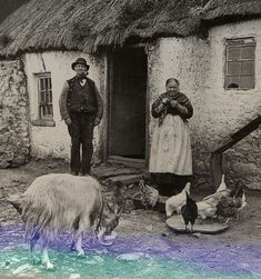 old irish cottage Old Pictures, Old Photos, Vintage Photos, Images Of Ireland, Ireland Pictures, Old Irish, Irish People, Erin Go Bragh, Irish Cottage
