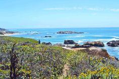 Pescadero Beach California Pacific Coast Highway 1 Road Trip Guide