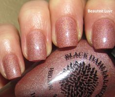 Black Dahlia Lacquer Capital Rose Garden, from the Capital Collection, 3 coats with top coat, with flash