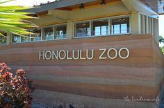 The Landrum Wife: Getting to Know Hawaii: Honolulu Zoo