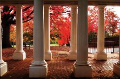 The University of Virginia in the Fall