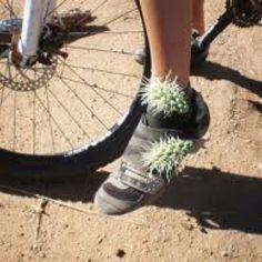 Mountain Biking ouch!!