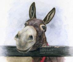Charity Prints for the Donkey Sanctuary - Siobhan Duggan Watercolor Animals, Watercolor Paintings, Donkey Drawing, Kunst Online, The Donkey, Horse Art, Pictures To Paint, Animal Paintings, Pet Portraits