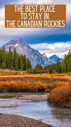 Best places to stay in Banff / Best place to stay in Canmore / Canadian Rockies Travel / Alberta #Canada #Alberta #Banff Travel Advice, Travel Guides, Suspension Bridge, Patio Seating, Canadian Rockies, Cabins In The Woods, Alberta Canada, Banff, Luxury Travel