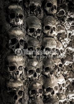 Stock Photo : Wall full of skulls and bones