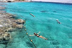 Eilat, Israel — by maya gigi. The coral beach nature reserve on the Red Sea, south or Eilat. swimming inside a postcard... #beach