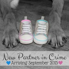 Our Baby Announcement with our puppy! :) YES! I can make yours too! Please Message or Email me if you're looking for custom baby announcements and more! KPlosDesign@gmail.com