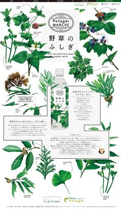 """Totally ignored the UI/ IA design, so it's hard to consider it as a """"web design"""", but beautiful as a graphic design. Japan Design, Web Design, Flyer Design, Book Design, Layout Design, Design Art, Print Design, Dm Poster, Poster Layout"""