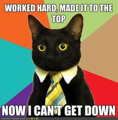 Can't get enough cat memes? Check out these hilarious, cute and silly cat memes we collected who show the best (and weirdest) cat traits that make these kitties our favorite fur-balls. Bd Comics, Rage Comics, Funny Cats, Funny Animals, Cute Animals, Cats Humor, Humor Humour, Funniest Animals, Funny Sleep