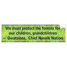protect the forests bumper stickers