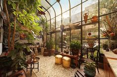 Atrium, imagine this off the kitchen filled with veggies and herbs