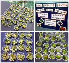Broccoli Three Ways at Drew ES