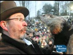 Punxsutawney Phil video--told from his perspective -- Cute!