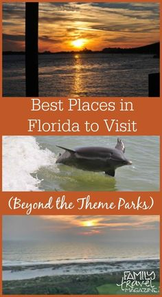 Best places to visit in Florida beyond the theme parks, including Saint Augustine, Amelia Island, Marco Island, and more. Clearwater Florida, Florida Keys, Orlando Florida, Best Places In Florida, Visit Florida, Florida Vacation, Florida Travel, Florida Beaches, Travel Usa