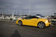 Lamborghini Gallardo waiting for its pilot 2007 Lamborghini Gallardo, Pilot, Waiting, Bmw, Pilots