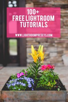 100+ Free Adobe Lightroom Tutorials. = I've finally committed to getting Lightroom, so I'll need these.