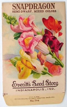 Everitt's Seed Store, Indianapolis, Indiana