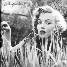 Norma Jeane la joven con muchas inseguridades que se escondía detras de la explosiva Marilyn