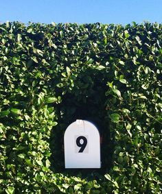 Mailbox in hedge.