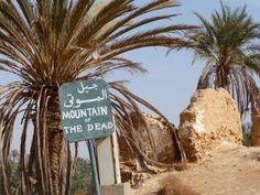 Siwa Egypt | siwa-oasis-egypt-siwa-egypt+1152_12945748779-tpfil02aw-10093.jpg