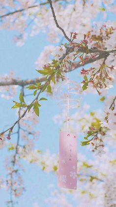 Ideas Landscape Photography Wallpaper Scenery For 2019 Flowers Wallpaper, Anime Scenery Wallpaper, Pastel Wallpaper, Nature Wallpaper, Wallpaper Backgrounds, Aesthetic Japan, Japanese Aesthetic, Flower Aesthetic, Pink Aesthetic